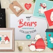 bear-collection