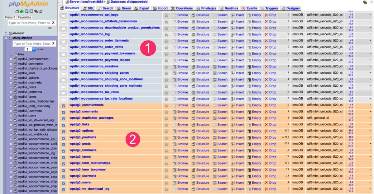Base de données du site WordPress cloné