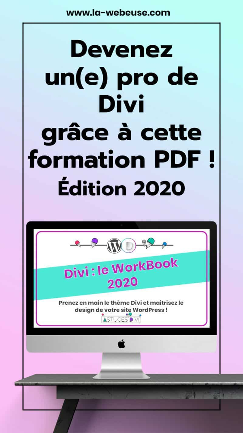 Pin Workbook 2020