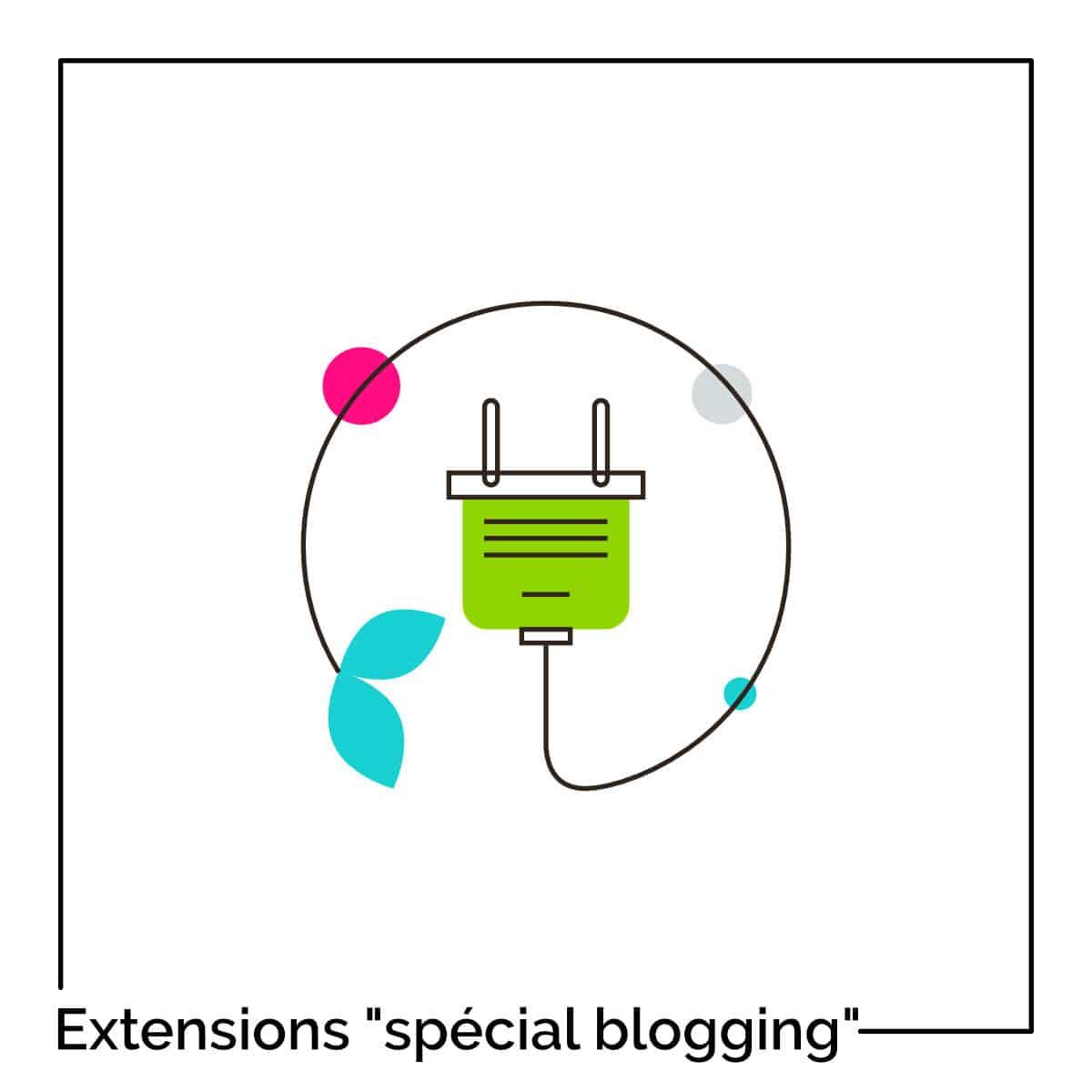 Extensions Special Blogging
