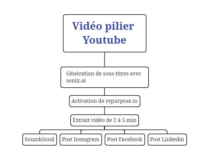 Système de distribution du contenu